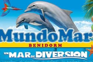 Дельфинарий в Бенидорме