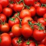 Испанские помидоры