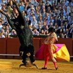 Ярко, живо, жизненно: коррида и фейерверки в Испании