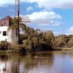 Парк «Ветряных мельниц» в Торревьехе