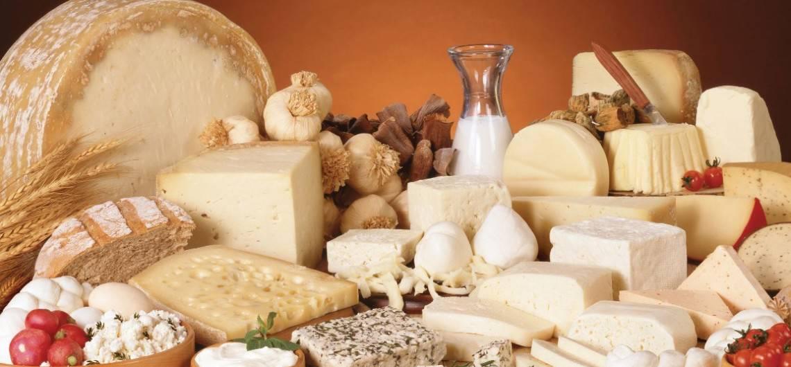 Испанские сыры – одни из самых лучших сыров в мире