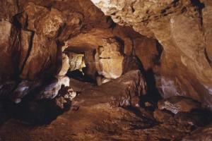Пещеры Альтамира (Cuevas de Altamira)
