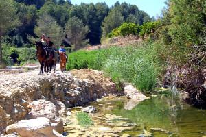 Конное ранчо Ла-Офра в провинции Аликанте