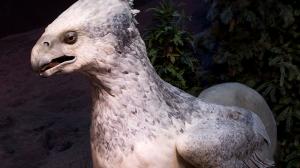 Всемирно известная выставка «Harry Potter: The Exhibition» скоро посетит Валенсию